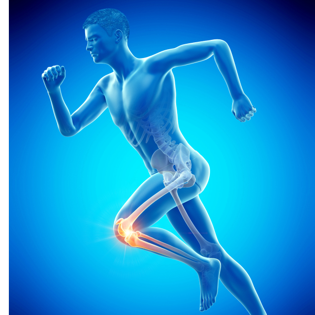スポーツ活動において多い怪我